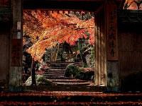 秋といえば!!♪