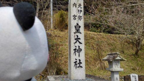KIMG4600