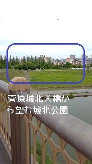 城北公園②